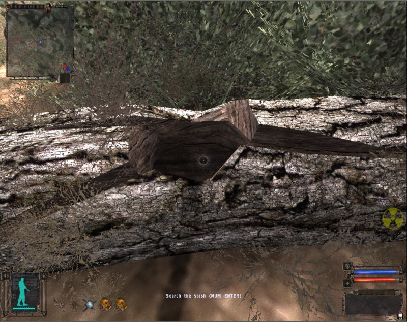Stash: Rotted log (Click image or link to go back)